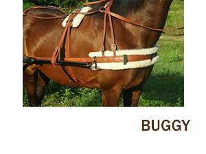 Horse Harness | Working Horse Tack in Amish Country