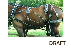 horse harness working horse tack in amish country horse harness hames at Horse Harness